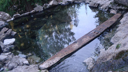 Close up of pool (Weir)